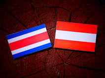 Costa Rican flag with Austrian flag on a tree stump  Royalty Free Stock Images