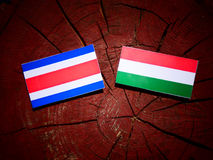Costa Rican flag with Hungarian flag on a tree stump isolated stock illustration