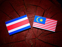 Costa Rican flag with Malaysian flag on a tree stump isolated royalty free illustration