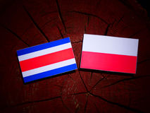 Costa Rican flag with Polish flag on a tree stump isolated. Costa Rican flag with Polish flag on a tree stump vector illustration