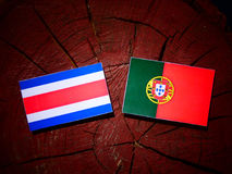 Costa Rican flag with Portuguese flag on a tree stump isolated royalty free stock photo