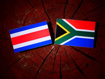 Costa Rican flag with South African flag on a tree stump isolate stock illustration