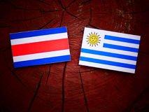 Costa Rican flag with Uruguaian flag on a tree stump isolated royalty free stock photography
