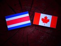 Costa Rican flaga z kanadyjczyk flaga na drzewnym fiszorku odizolowywającym obraz royalty free