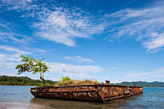 Costa Rican Landscape. An old rusty vessel with a tree on a beach. Puerto Viejo, Costa Rica royalty free stock image