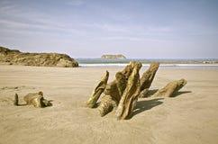 Costa Rican Strand lizenzfreies stockbild