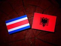 Costa Rican-vlag met Albanese vlag op een geïsoleerde boomstomp royalty-vrije illustratie