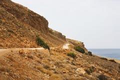 Costa rocciosa di Creta Fotografia Stock