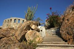 Costa rocciosa di fioritura di Acapulco Immagine Stock Libera da Diritti