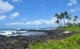 Costa rochosa de Kauai, Havaí Imagem de Stock