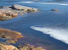 Costa rochosa do oceano com gelo Fotos de Stock Royalty Free
