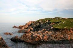Costa rochosa em Nova Escócia Fotos de Stock