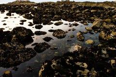 Costa rocosa imagen de archivo