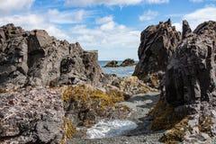 Costa rocosa con las piscinas de la marea en verano foto de archivo