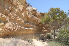 Costa rocosa de Chipre imagen de archivo