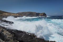 Costa rocosa en la isla de Gozo Imagenes de archivo