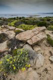 Costa rocosa, horizonte sobre el mar y las montañas abajo al agua Fotografía de archivo libre de regalías