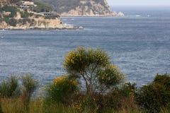 Costa rocosa Lloret de Mar, España Foto de archivo libre de regalías