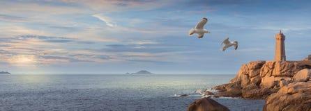 Costa rosa del granito in Bretagna, Ouest del nord della Francia Fotografie Stock Libere da Diritti