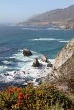 Costa rugosa de California Foto de archivo