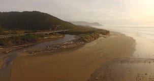 Costa salvaje de Oregon del puente del Océano Pacífico de la boca de río de los pescados de los pájaros almacen de metraje de vídeo