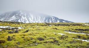 Costa sul de Islândia, paisagem fotografia de stock