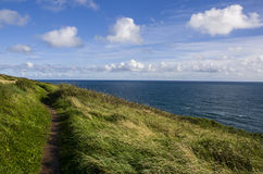 Costa sull'Irlanda Fotografia Stock