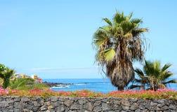 Costa tropical Imagens de Stock Royalty Free