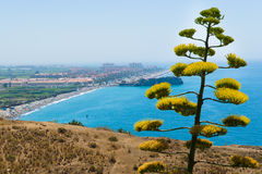 Costa del Sol. Costa Tropical is an area situated in the south of Spain (Andalusia South), in the region located between Granada and the Costa del Sol and Costa stock photos