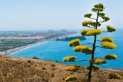 Costa Del Zol zdjęcia stock