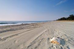 Costa verde beach in Corsica Stock Image