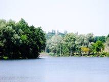 Costa verde do grande lago Imagem de Stock