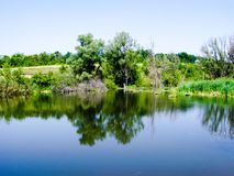 Costa verde do lago pequeno Foto de Stock Royalty Free