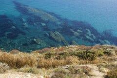 costa verde e amarela da erva daninha, mar azul claro e rochas Imagens de Stock