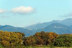 Costa verde mountains in Corsica Stock Photo