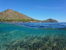 Costa costa y pescados de España Costa Brava subacuáticos fotografía de archivo