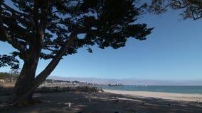 Costa costa y puerto deportivo en la bahía de Monterey almacen de metraje de vídeo