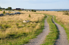Costal dirt road with grass. Costal road at the Baltic Sea in Sweden Royalty Free Stock Image