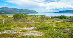 Costal shoreline view in Norway during summer. Costal shoreline view in Northern Norway during summer royalty free stock photography