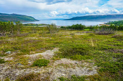 Costal view in Norway during summer royalty free stock photos