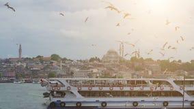 Costantinopoli, il Bosforo, Turchia Gabbiani che sorvolano il mare, contro il contesto di vecchia città video d archivio