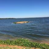 Costas de Chivero do lago, santuário de pássaro Harare Fotografia de Stock