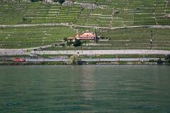 Costas de Genebra do lago e um trem de passagem Foto de Stock
