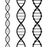 Costas do ADN Imagens de Stock