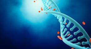 Costas do ADN com hemoglobina Imagem de Stock Royalty Free