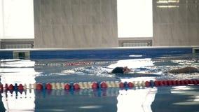 Costas profissional bonita na associação, tiro da natação do nadador da zorra da câmera vídeos de arquivo