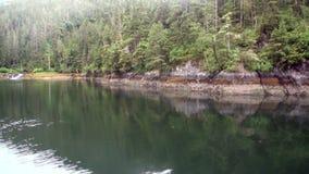 Costeie no fundo do Oceano Pacífico calmo da água em Alaska filme