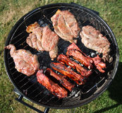 Costeletas de carne de porco do BBQ e reforços do cordeiro Fotos de Stock