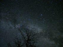 Costellazione del Cygnus delle stelle della Via Lattea e dell'universo su cielo notturno fotografia stock