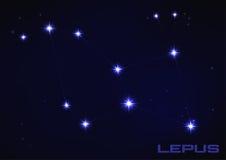Costellazione del Lepus Immagine Stock Libera da Diritti